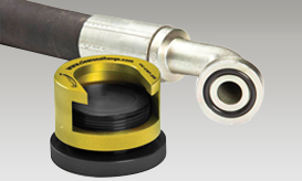Clean Seal Flanges