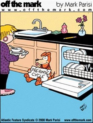 dog cleanes dirty dishes